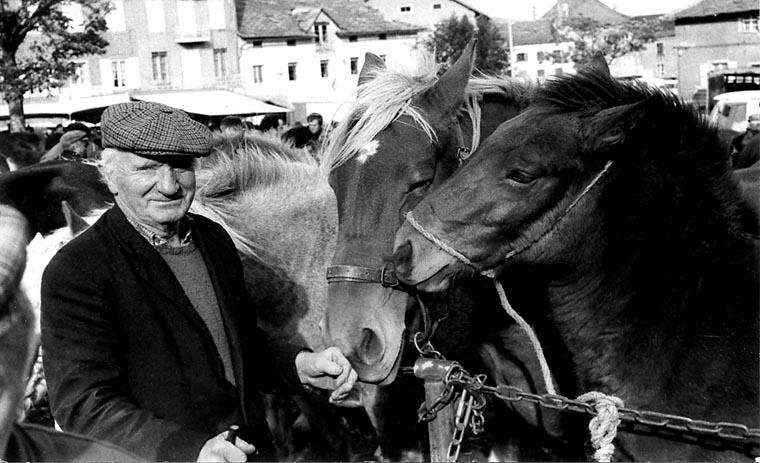 1987_foire aux chevaux de Fay sur Lignon_un éleveur avec ses chevaux__.jpg