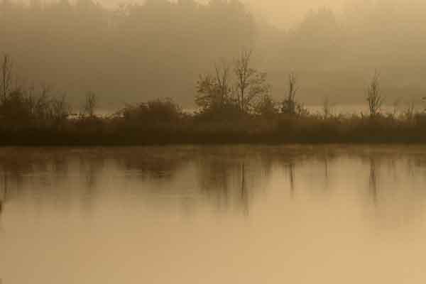 automne_1173.jpg