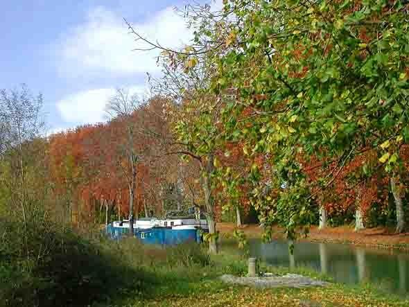 blog -  couleurs d'automne.jpg