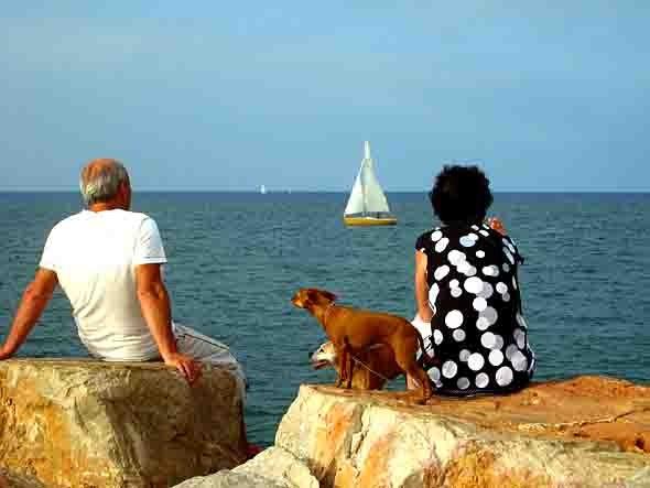 la jetée de St Cyprien -blog.jpg