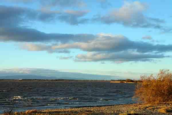 crépuscule sur l'étang_6960.jpg