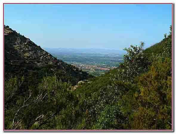 vue sur Laroque des Albères.jpg