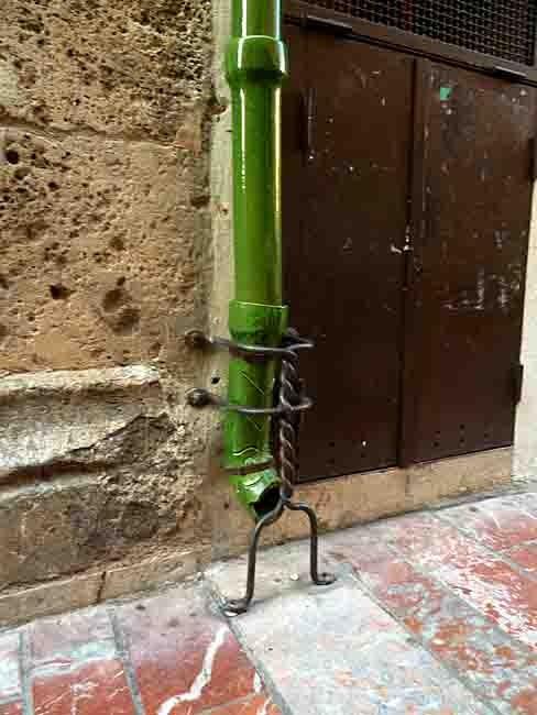 chéneau vert et sa protection - P1020253 copie.jpg