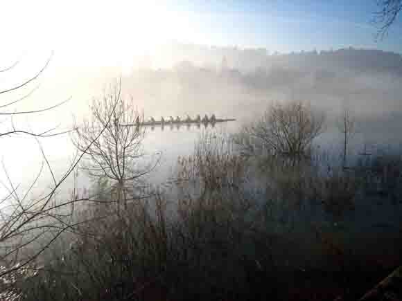 1380 - brouillard sur la saône.jpg