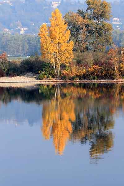 automne_1179.jpg