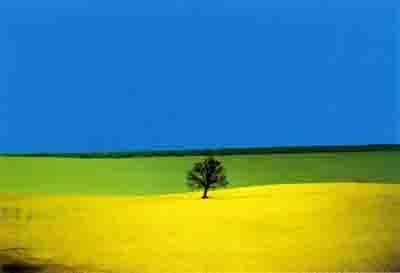 Fontana bleu vert jaune.jpg
