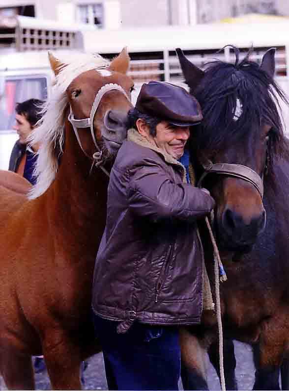 1986 - foire aux chevaux de Fay sur Lignon -2.jpg