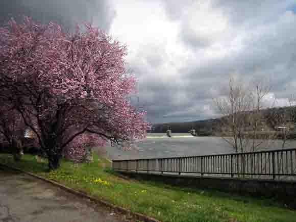 la Saône  en rose - blog.jpg