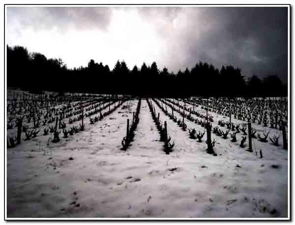 neige_073.jpg