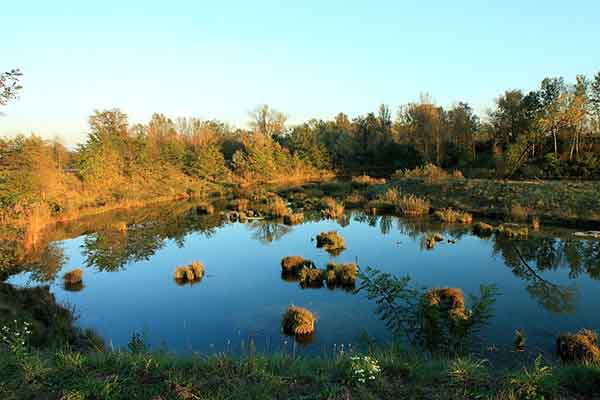 calme sur l'étang_5778 x 600.jpg