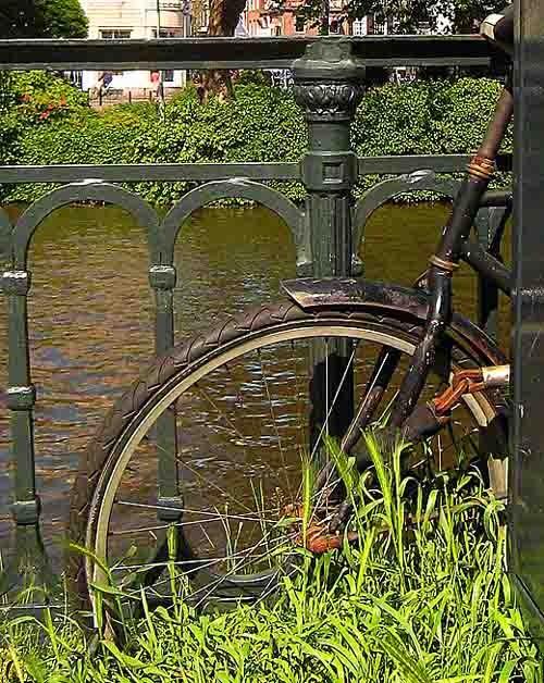 vélo roue.jpg