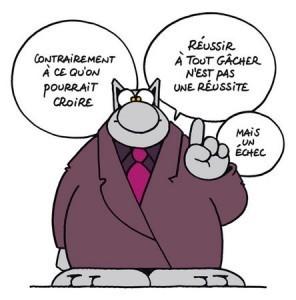 chat belge.jpg