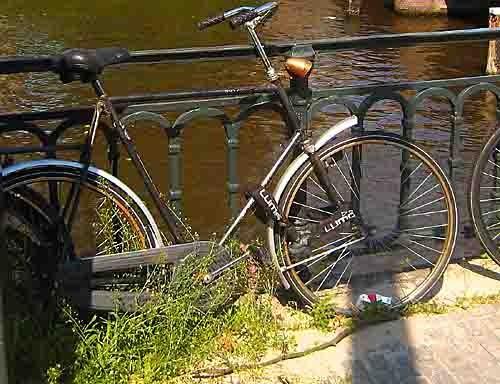 vélo abandon.jpg