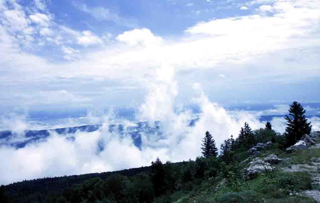 brouillard_4610.jpg