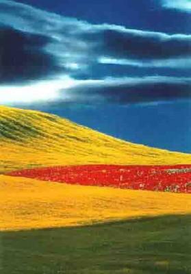 Fontana-Paesa 2000. ht bleu jaune rouge.jpg