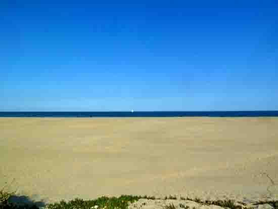 plage en avril - P1020448.jpg