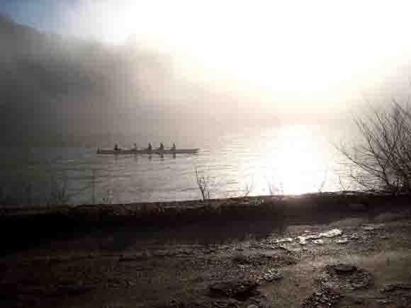 1373 - brouillard et aviron.jpg