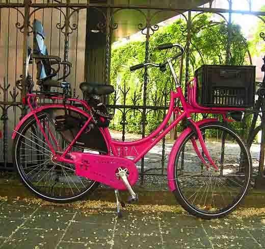 vélo rose.jpg
