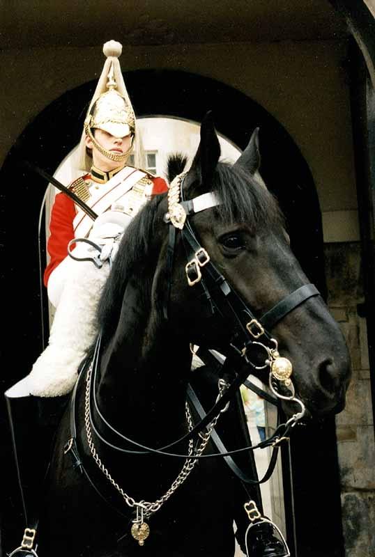 1996_Londres_un Horse-guard_bis.jpg