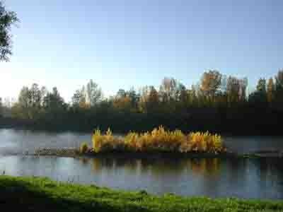 4187 - la Garonne en automne.jpg