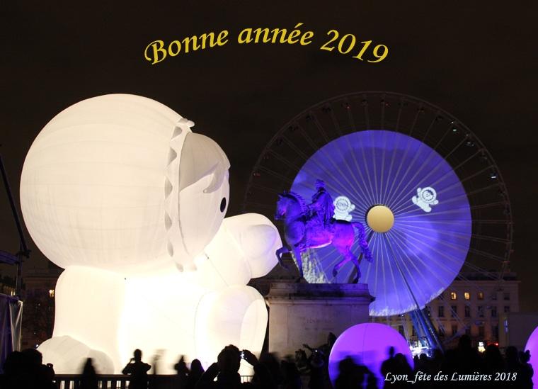 2018_fête des Lumières_8552.jpg