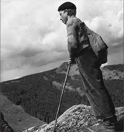 berger en Auvergne 1950.jpg