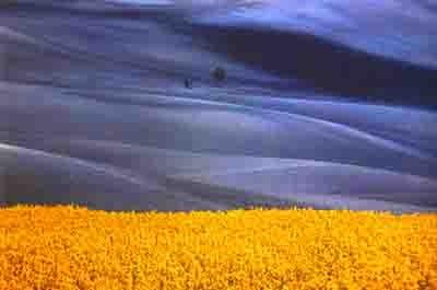 fontana - bleu jaune.jpg