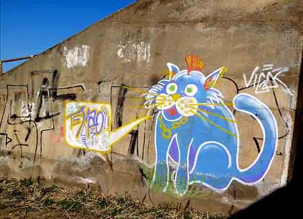 chat bleu - P1020236.jpg