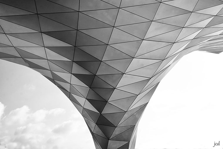 Lyon_musée des Confluences_9926  b&w.jpg